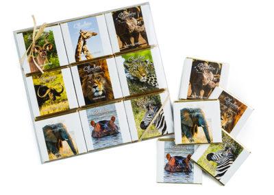 9-Piece Animal | 30g Slab Collection